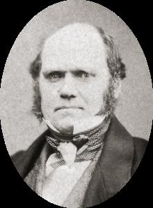 Charles Darwin nel 1855  (fonte wikimedia)
